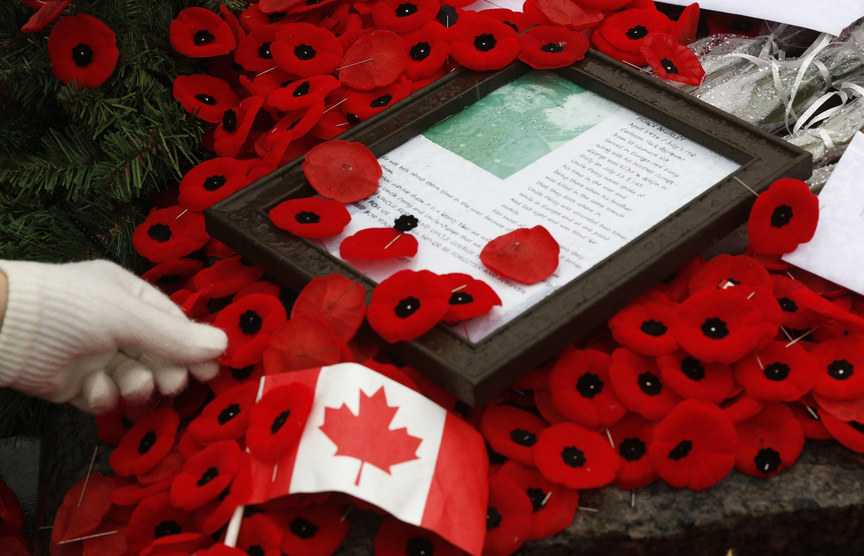 Woman places poppy on the Tomb of the Unknown Soldier following the Remembrance Day ceremony at the National War Memorial in Ottawa