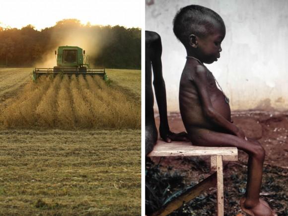 Thompson - Famine and farm