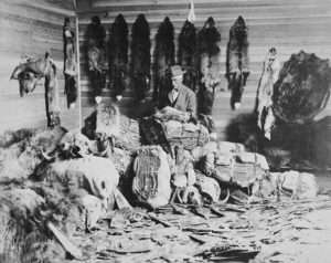 Western resources, fur trade